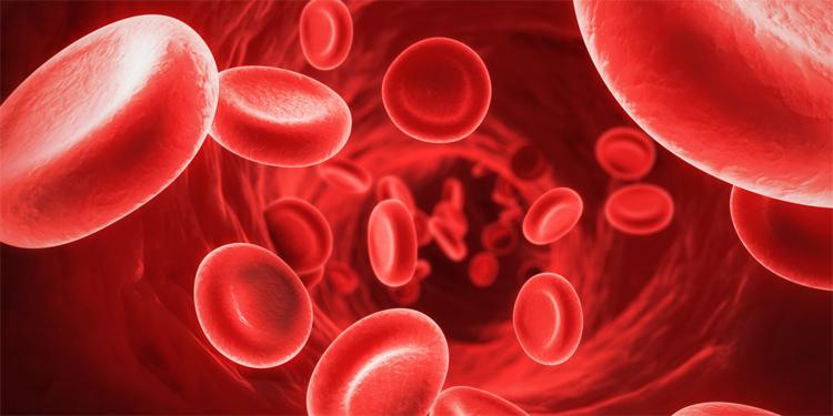 Anemia ferropénica, la más frecuente - Hospital La Paloma
