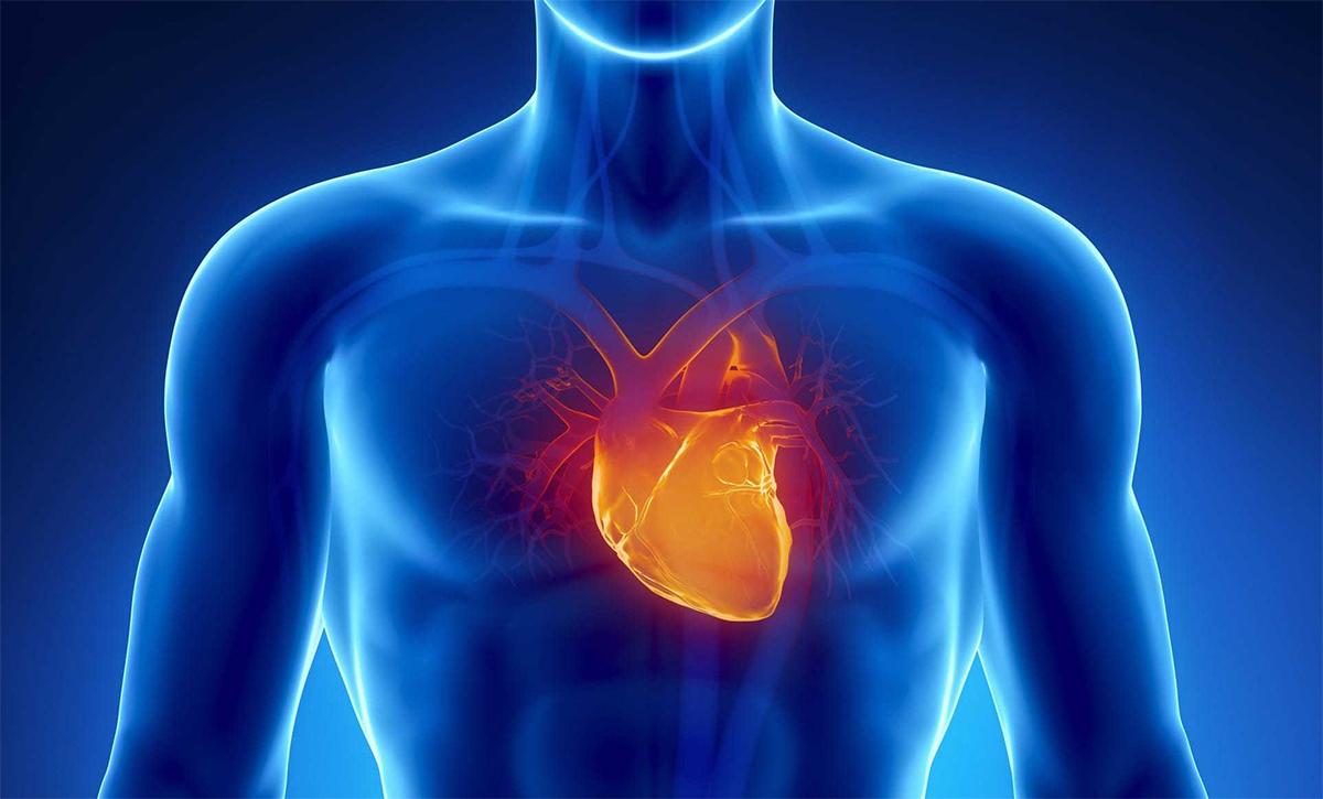 Unidad de Cardiología del Hospital La Paloma